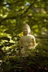 buddha-statuette-in-the-forest-1412519-639x961
