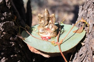 Ganesha in the tree ftr